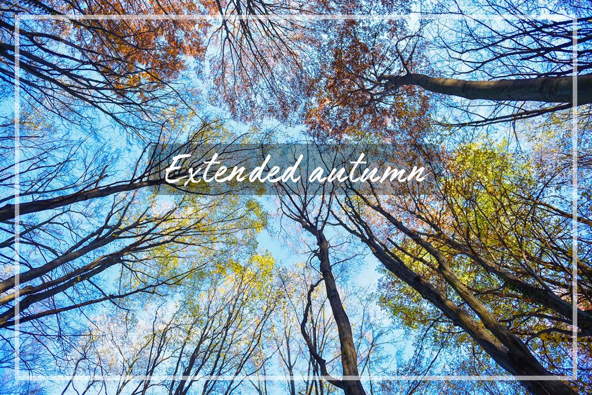 Podaljšana jesen
