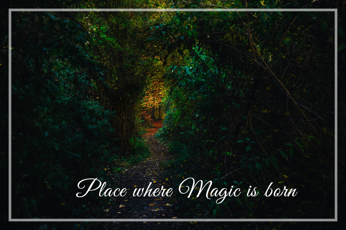 Place where magic is born