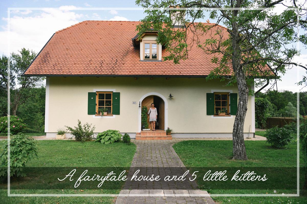Pravljična hiška in pet majhnihmuckov